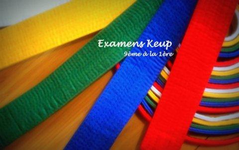 Examens KUP (Uccle & Braine)