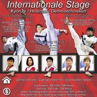 Stage taekwondo limburg 10 06 2017